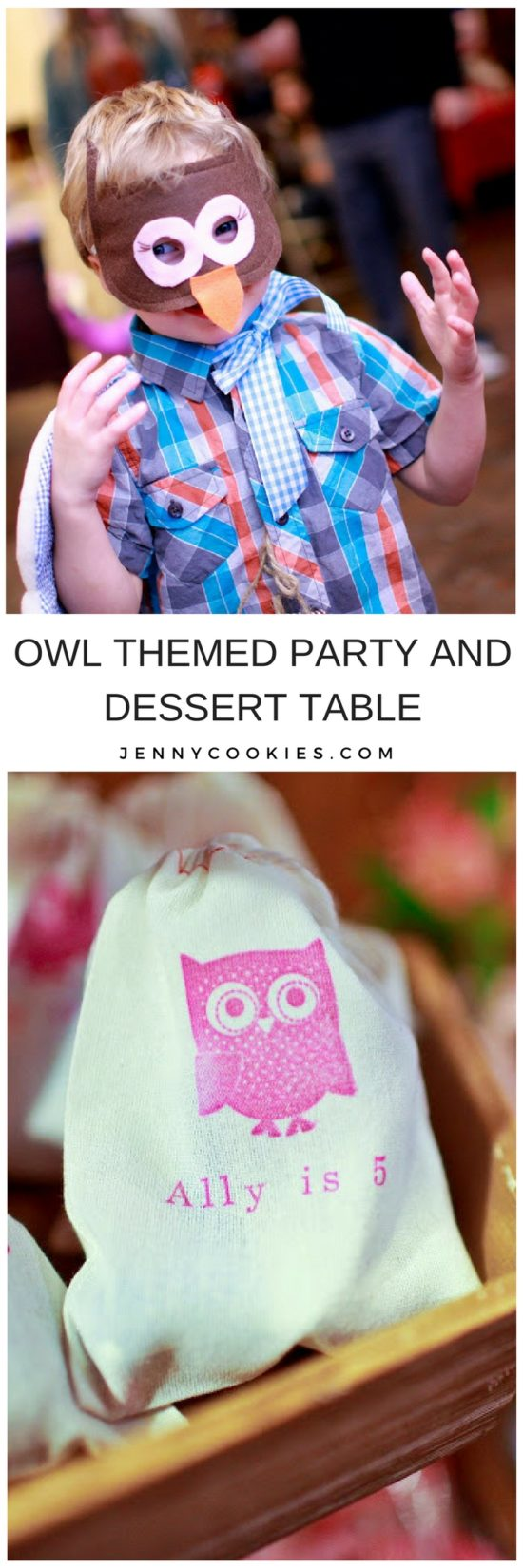 Ally's 5th Birthday | 5th birthday party ideas | owl themed birthday party | owl themed dessert table | girl birthday party ideas | kids birthday parties | diy birthday party ideas | diy dessert tables || JennyCookies.com #owlpartyideas #kidsbirthday #desserttables