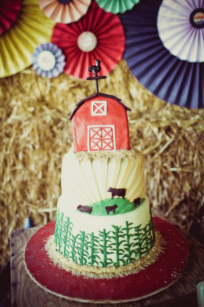 Barn Party Cake