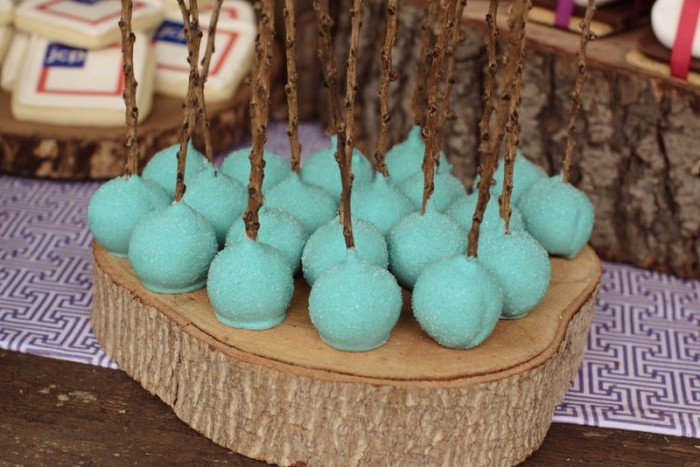 camp out cake pops