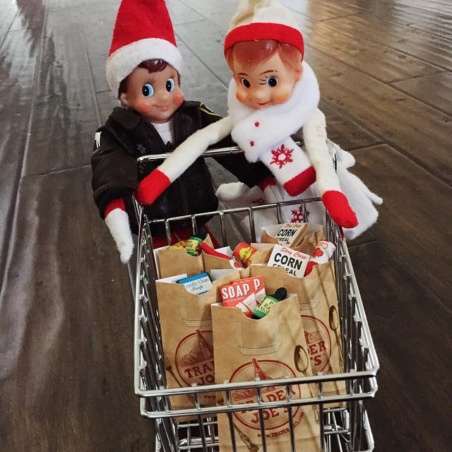 So grateful Buddy and Snowflake showed up with groceries.. One less errand I have to run! #jennycookieselfontheshelf