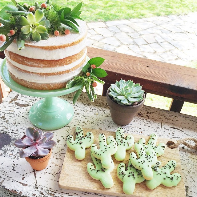 A naked succulent topped cake and cacti cookies for yesterday's #ladieslunch. Which would you go for?! ?