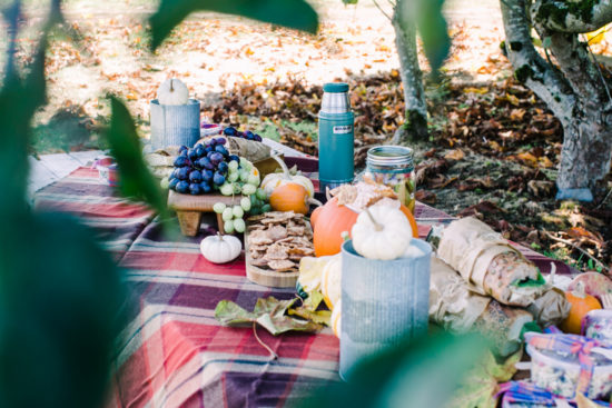 How to Host a Ladies Lunch at the Pumpkin Patch | fall lunch ideas | hosting a fall ladies lunch | ladies lunch ideas | fall party ideas | fall get togethers | pumpkin patch party ideas | fall lunch ideas || JennyCookies.com #ladieslunch #fallparty #pumpkinpatch