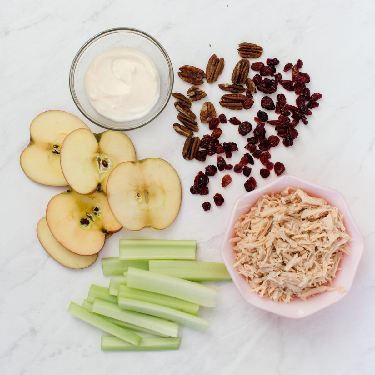 Cranberry Chicken Salad Apple Bites | summer party foods | chicken salad recipes | healthy appetizers | party appetizers || JennyCookies.com #summerparty #recipe #summerecipe #chickensalad #apples #applebites #appetizer