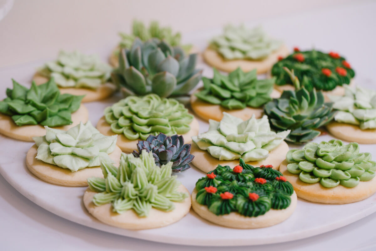 How To Host A Succulent Garden Party