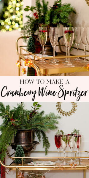 How to Make a Cranberry Wine Spritzer   wine spritzer recipes   holiday drink recipes    JennyCookies.com #wine #winespritzer #holidaydrinks #jennycookies