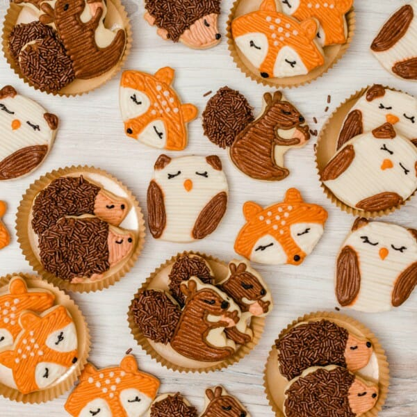 How to Decorate Woodland Animal Sugar Cookies
